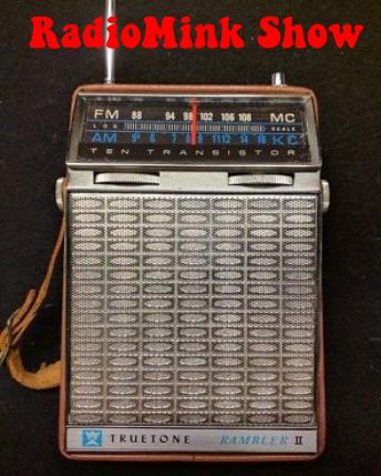 truetone-rambler-10-transistor-radio-am-fm-radiomink