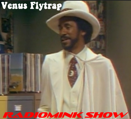 venus-flytrap-white-cape-radiomink