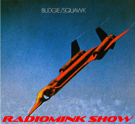 budgie-squawk-radiomink