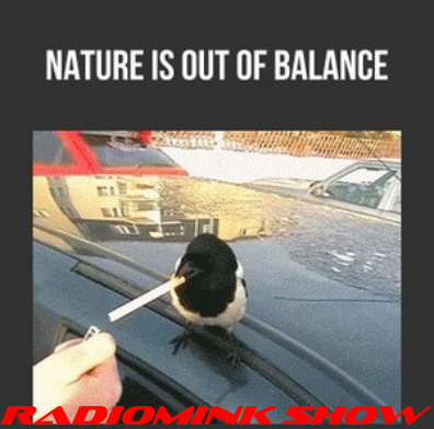nature-is-out-of-balance-radiomink