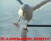off-balance-radiomink
